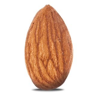 Illustration amandes